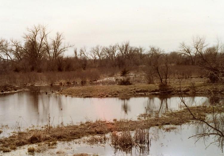 Clearwater Creek 5